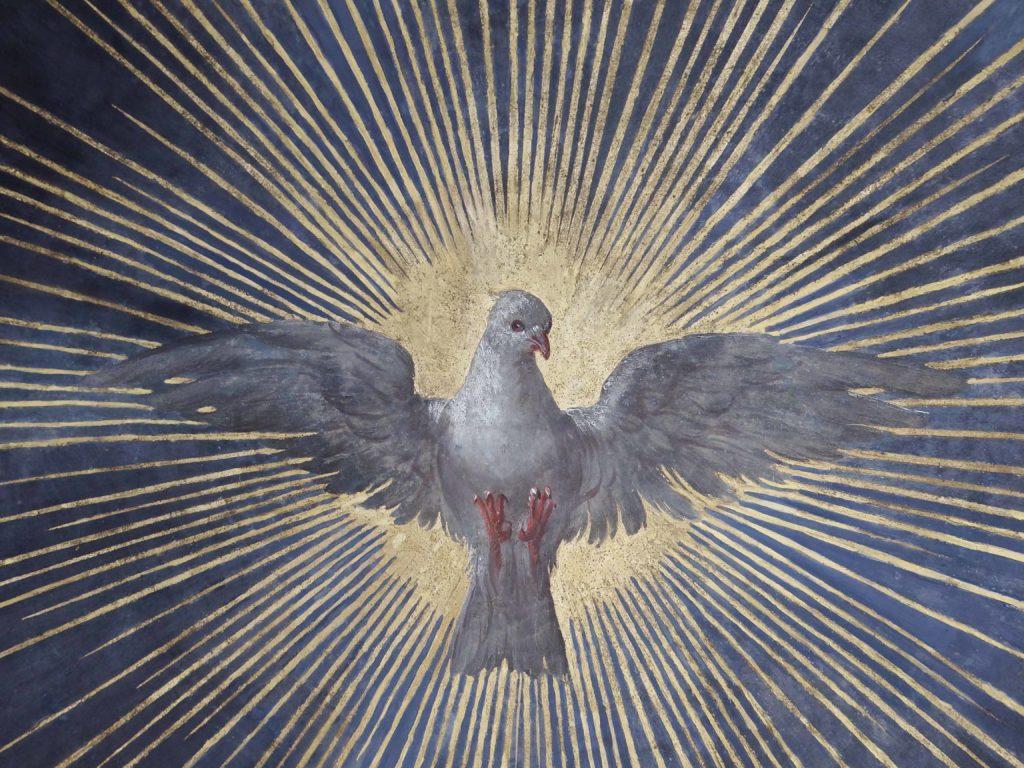saint nicolas oiseau après
